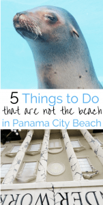 Things to do in Panama City Beach that aren't the beach
