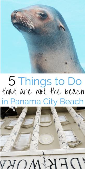 Panama City Beach Attractions