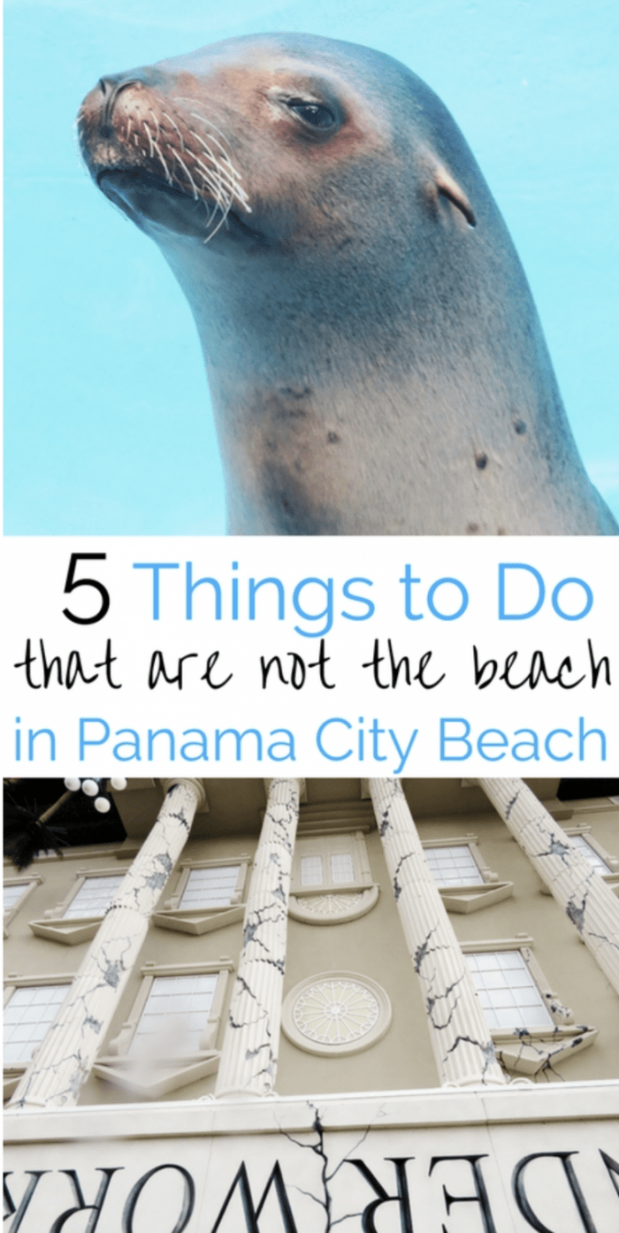 Looking for family things to do in Panama City Beach, here are 5 attractions families enjoy that aren't the beach