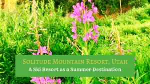 Summer at Solitude Mountain