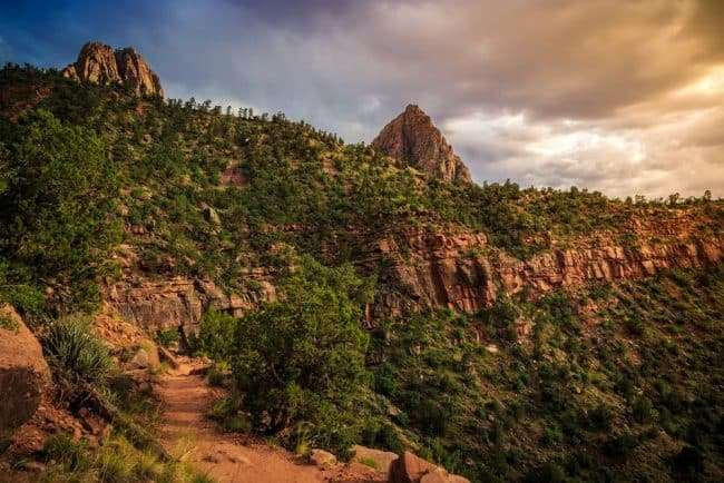 Mountains and landscape - The Watchman Trail at Zion National Park