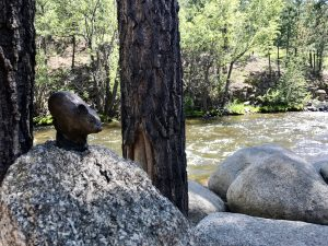 Pikas in the Park is a scavenger hunt in Estes Park, Colorado. Follow the clues to find 12 pika statutes and great local finds