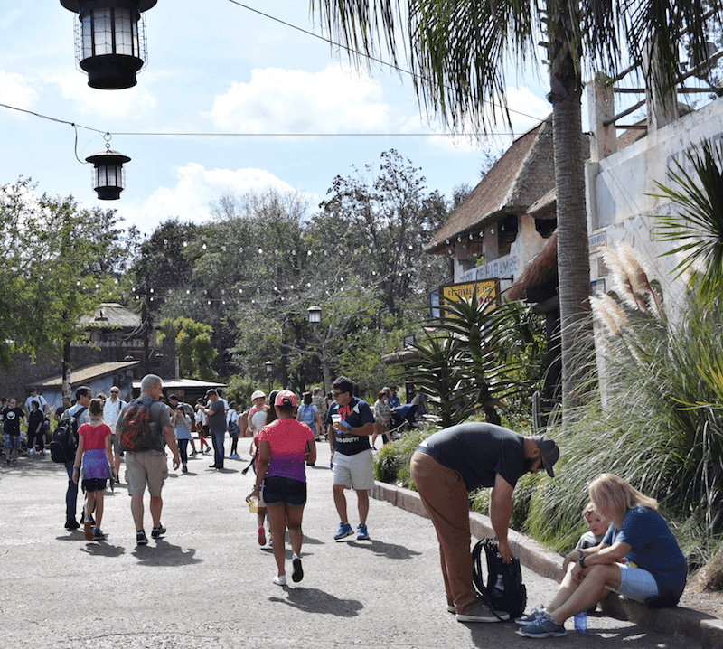 Animal Kingdom at Walt Disney WOrld - Going to Disney with a Tween or Teen? Here are a Few Tips on What to Bring Along to a Disney Park.