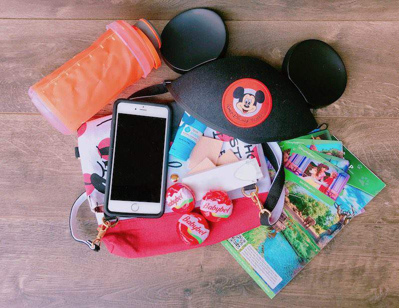 What to take to Disney Park with tweens - xGoing to Disney with a Tween or Teen? Here are a Few Tips on What to Bring Along to a Disney Park.