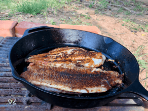 blackened catfish in a cast iron skillet