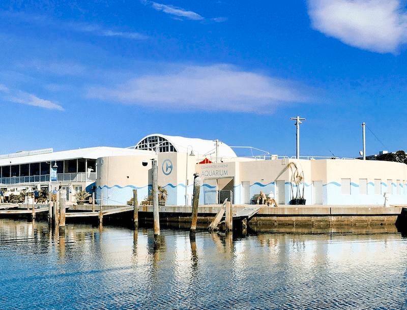 Clearwater Marine Aquarium building