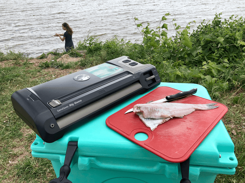 FoodSaver GameSaver, Cutting board with fresh catfish, girl fishing