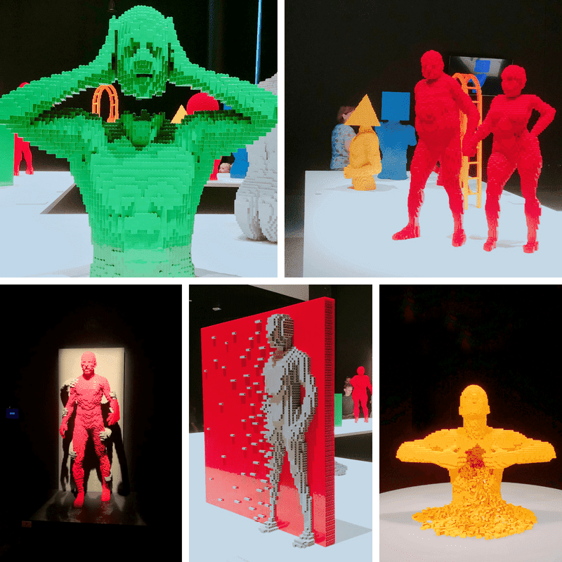 Art of the Brick - Human Body