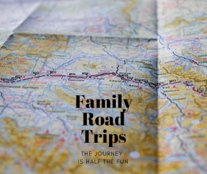 Quote - Family Road Trips - The journey is half the fun