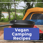 20+ Vegan Camping Food Recipes and Ideas for your Next Campout