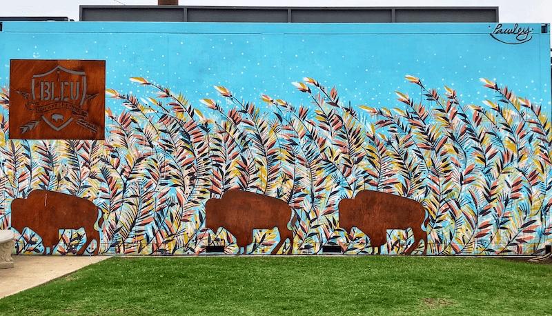 Buffalo Mural - Bleu Garten OKC