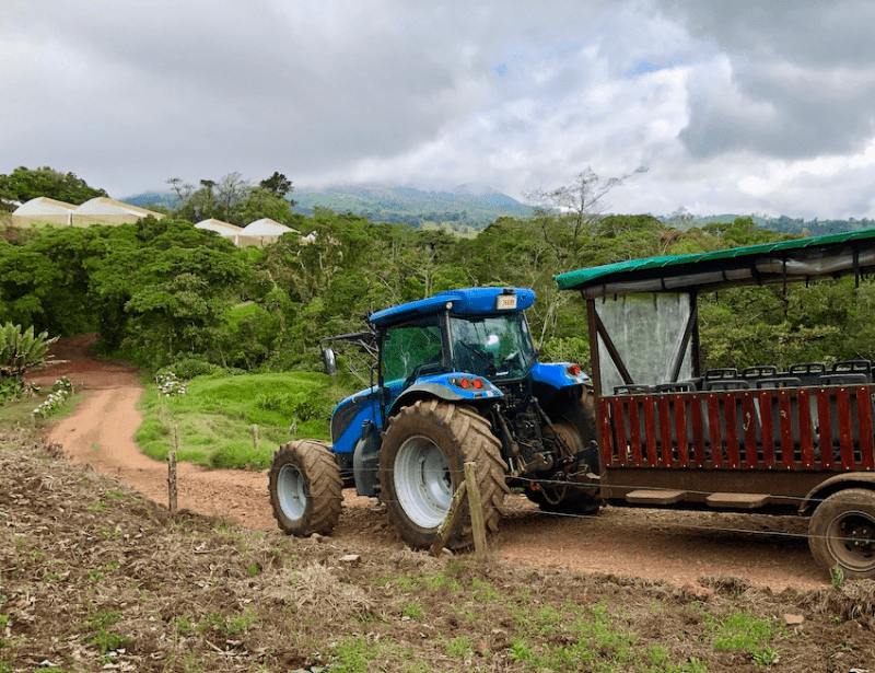 Tracor pulling a cart on a Costa Rica dairy farm