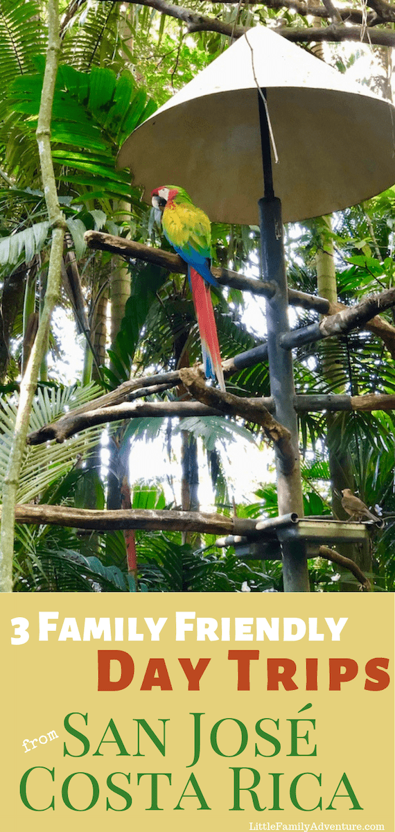 Many visitors to Costa Rica start with San Jose. Here are three family friendly day trips from the capital city that show you Costa Rican animals, traditional food, the cloud forest, and the tropical rain forests.