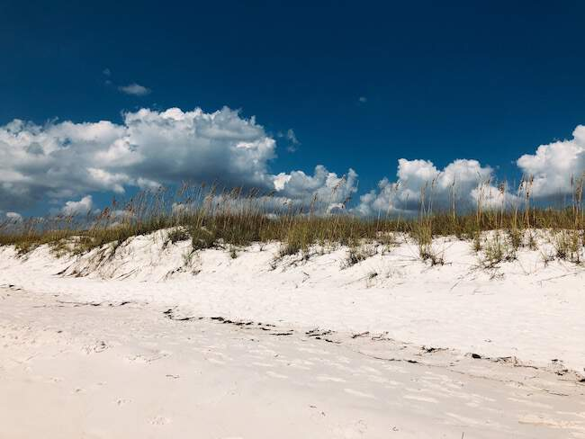 Shell Island san dunes, Panama City Beach