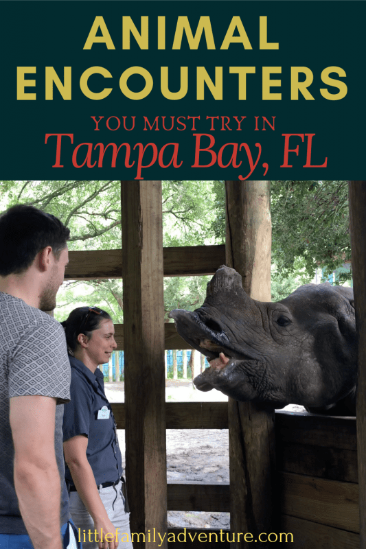Animal Encounters Florida