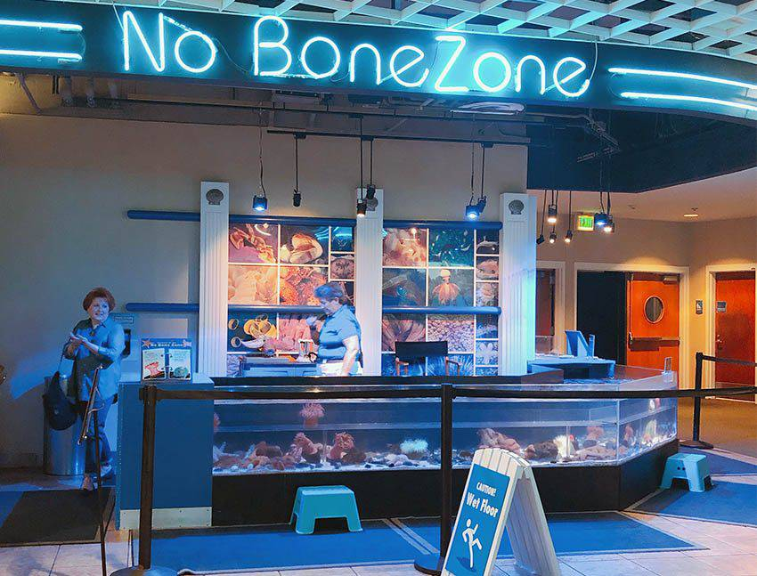 Florida Aquarium No Bone Zone