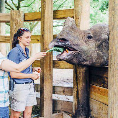 5 Animal Experiences You Won't Want to Miss in Tampa, Florida