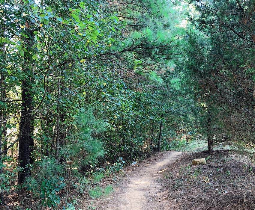 Mazeppa Park Mountain Bike Trail