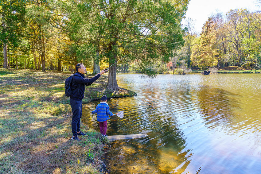 Tanglewood Park Fishing