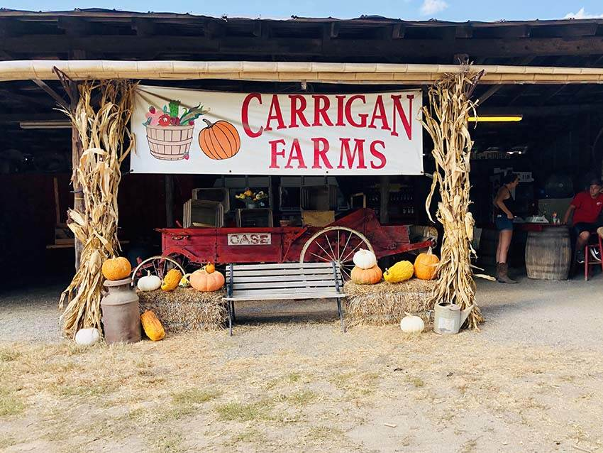 Carrigan farm stand