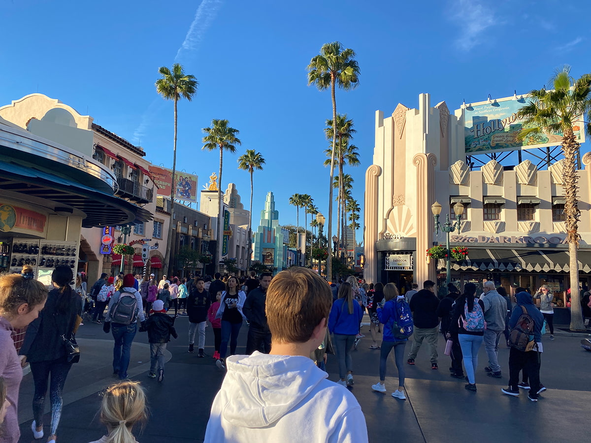 Hollywood Studios crowd