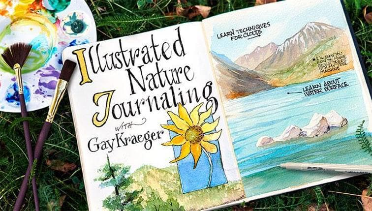 illustrated-nature-journaling