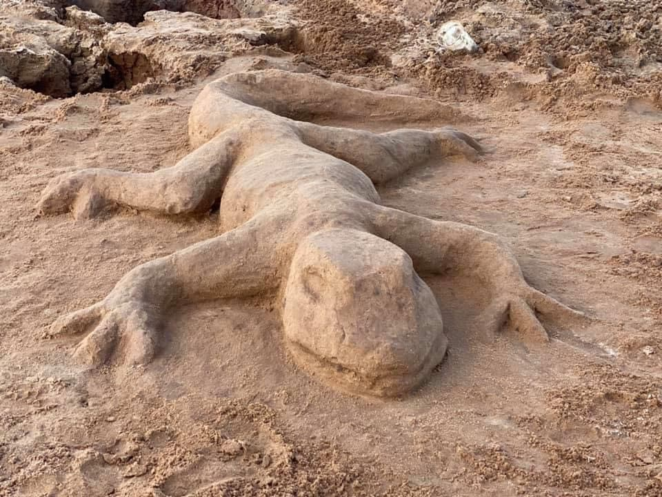 sand lizard sculpture