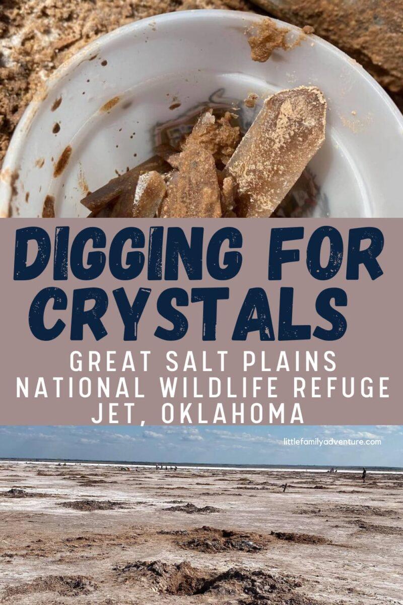 digging for crystals graphic, selenite crystals, salt plains
