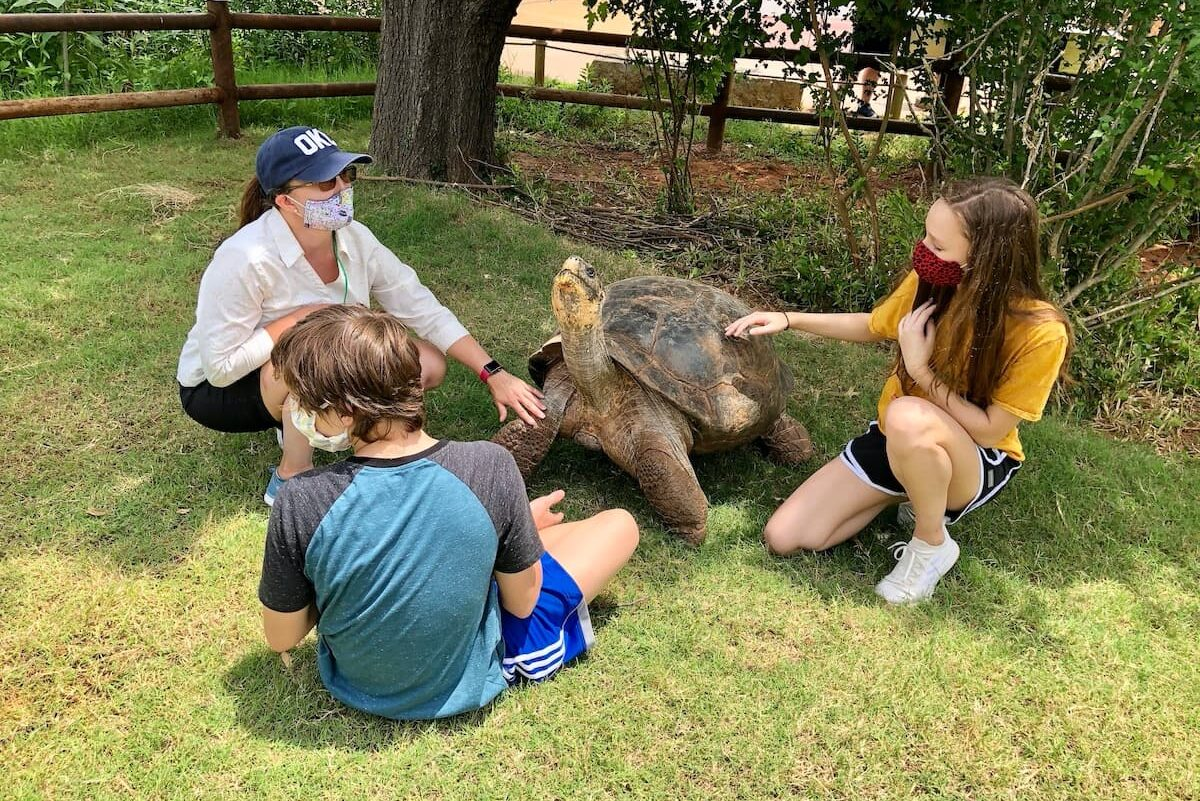 Go Wild With These 6 OKC Zoo Animal Experiences