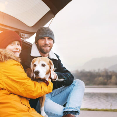 Safety Tips for Traveling with Your Dog in a Car