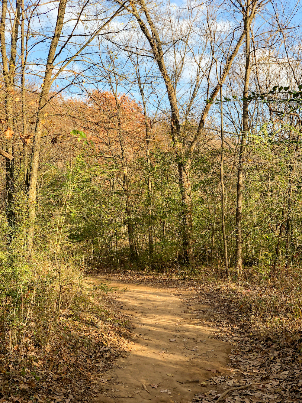 outdoor trail