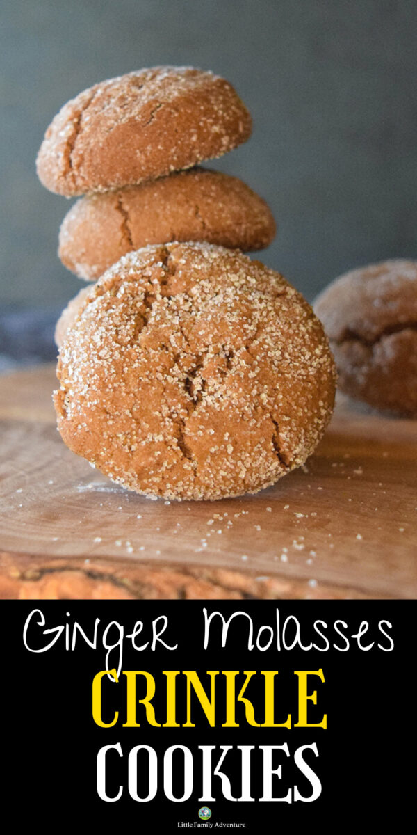 molasses ginger crinkle cookies