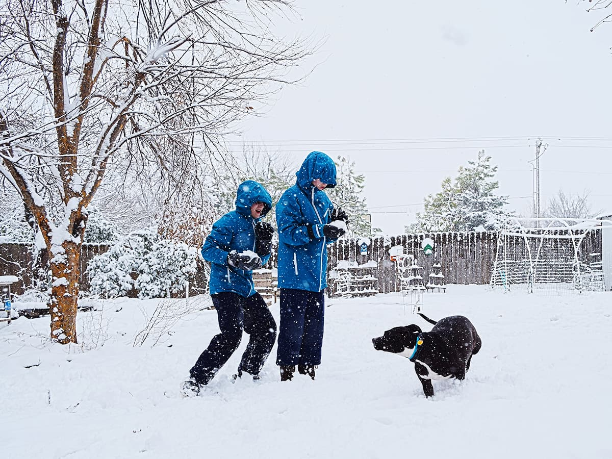 kids and dog playing in snow