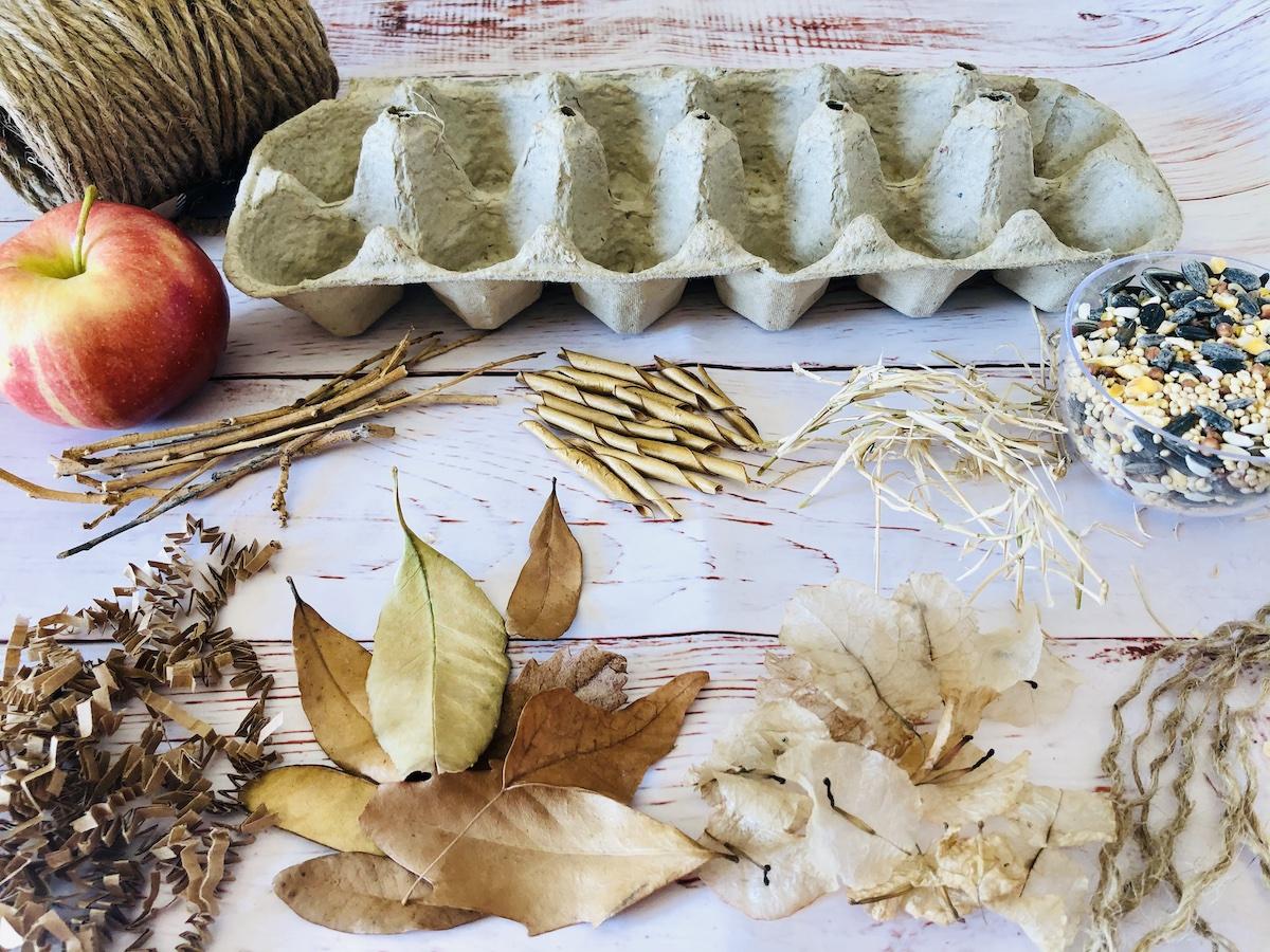 Materials for egg carton bird feeder and nesting craft