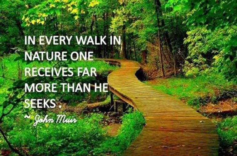 Walk in Nature meme