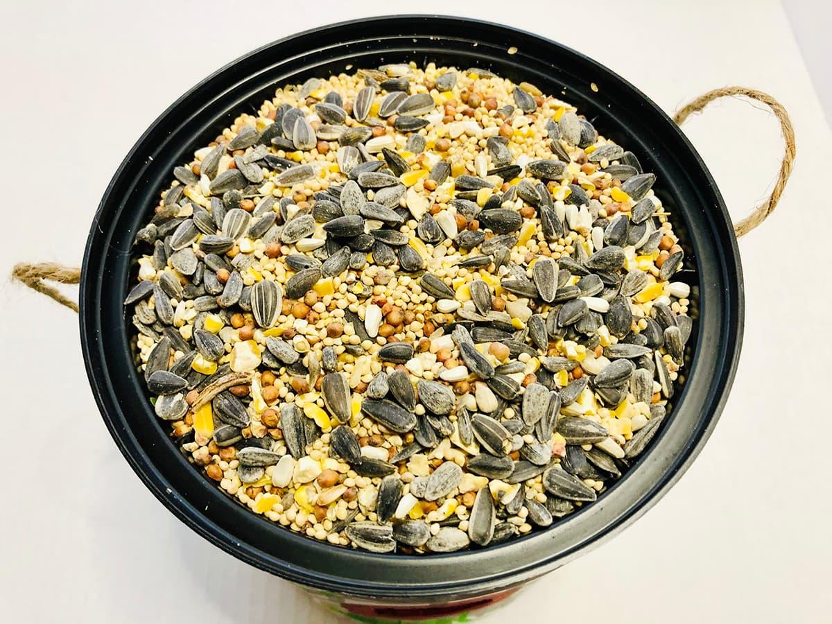 birdseed in tray