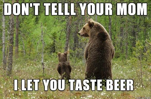 bears in teh woods