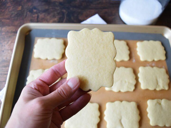 hand holding sugar cookie