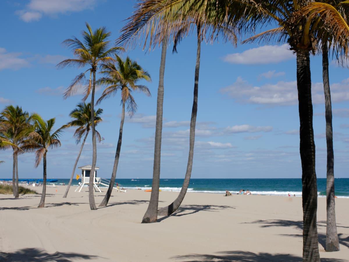 fort lauderdale beach. palm beaches