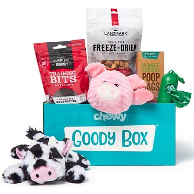 puppy gift box with toys and treat