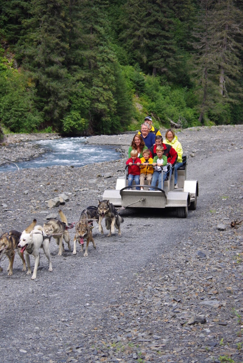 summer dog sled cart with family