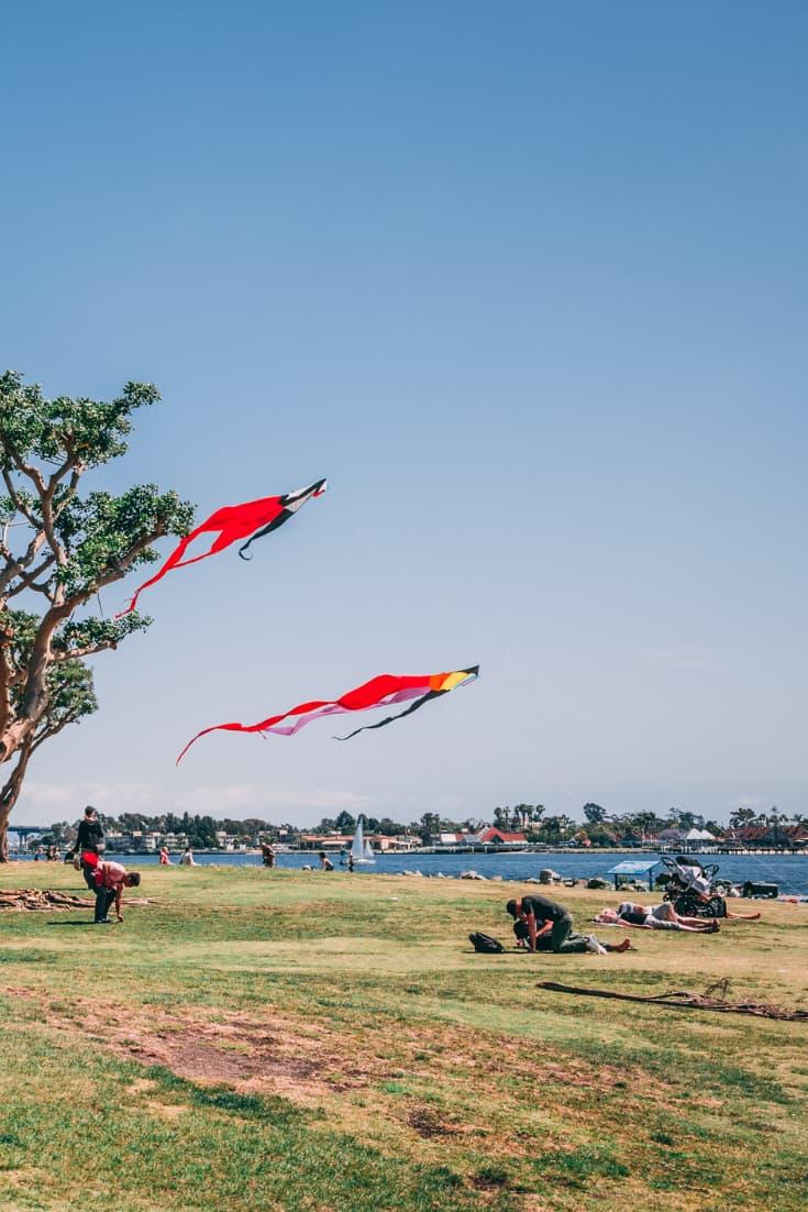 kites flying in park