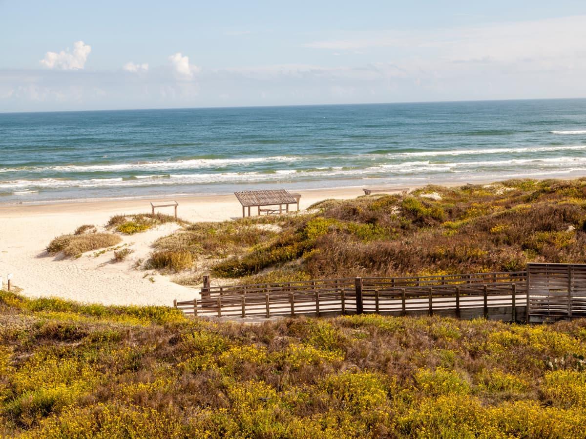 beach and sand dunes - Padre Island National Seashore