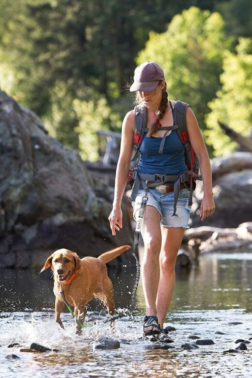 woman walking with dog in water